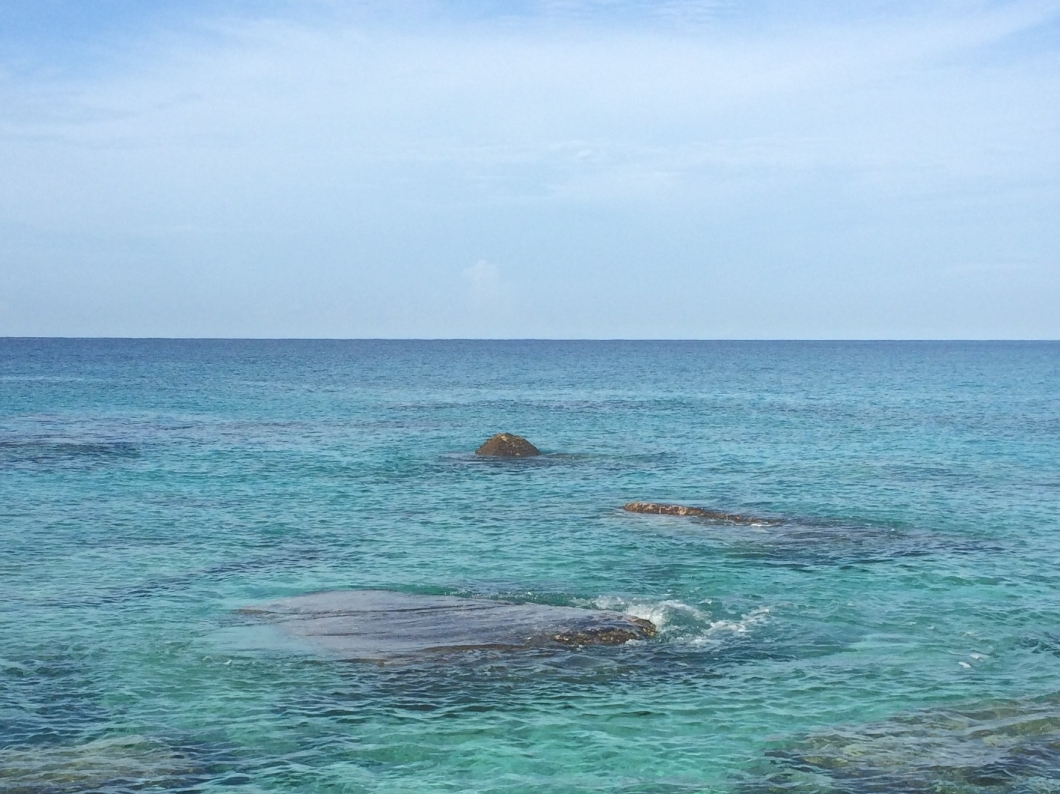 Coral Reef at Playa Giron